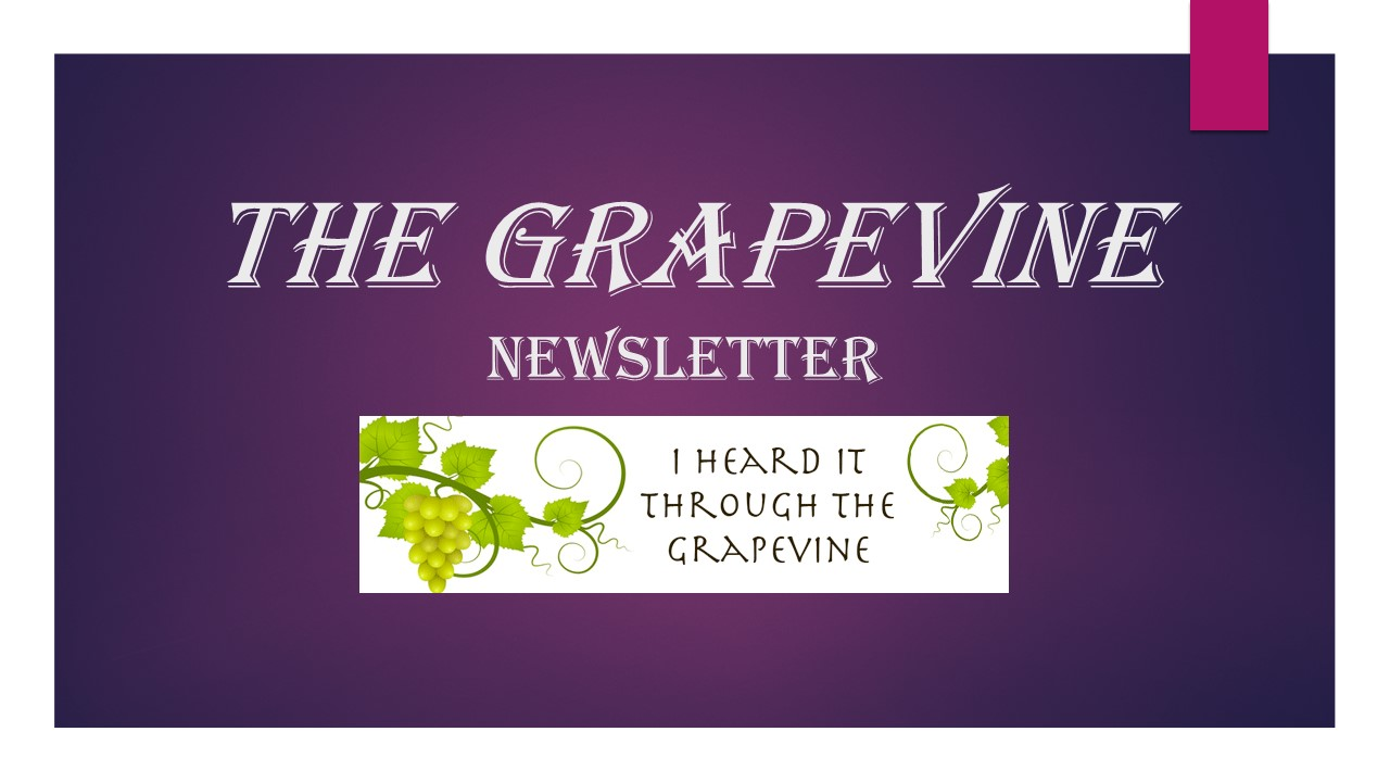 Gilston Grapevine Newsletter
