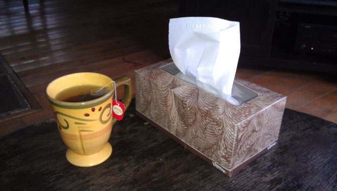 Tea & Tissues Welcome Morning Tea