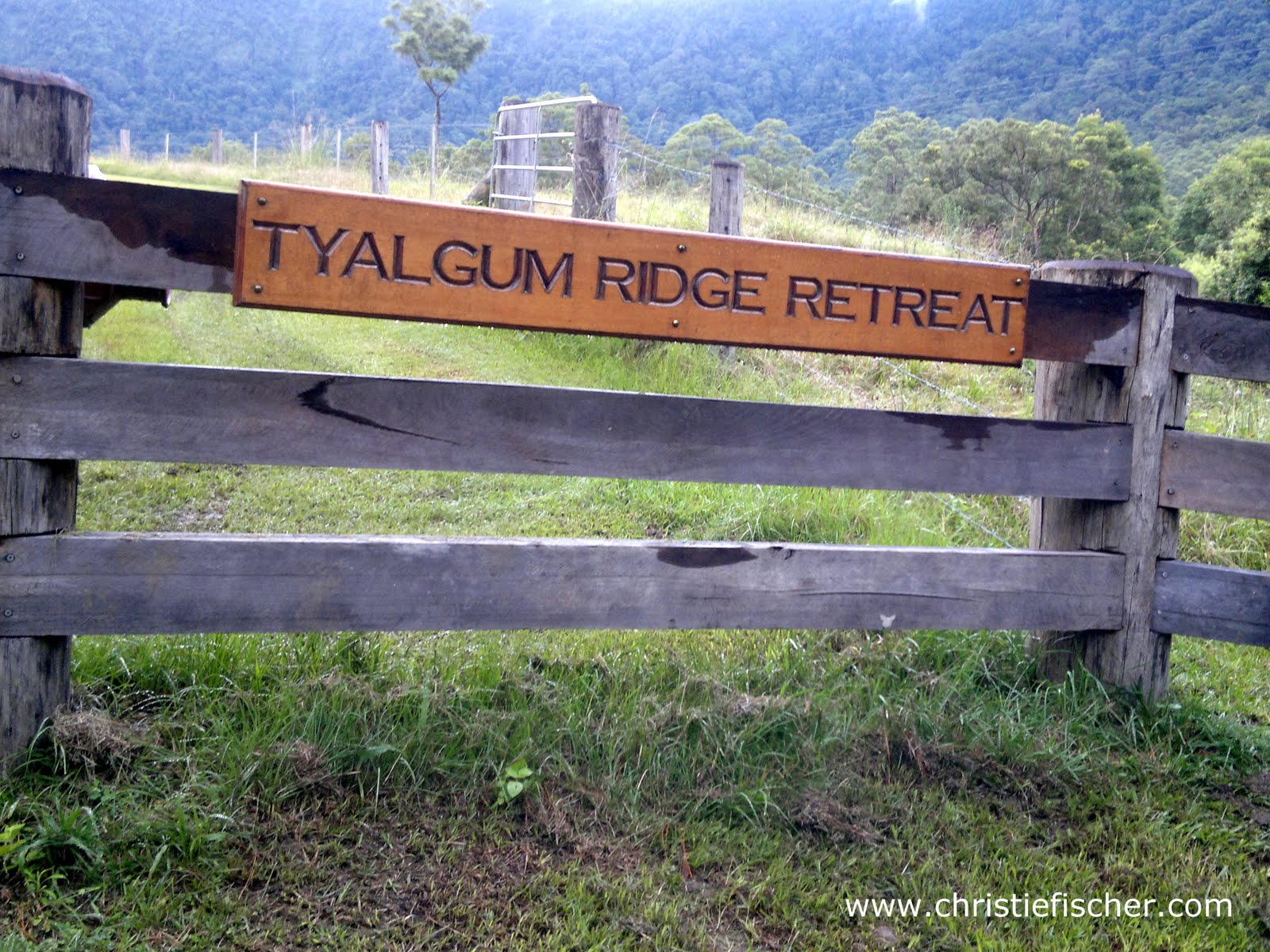 Year 5 Camp Tyalgum Ridge Retreat